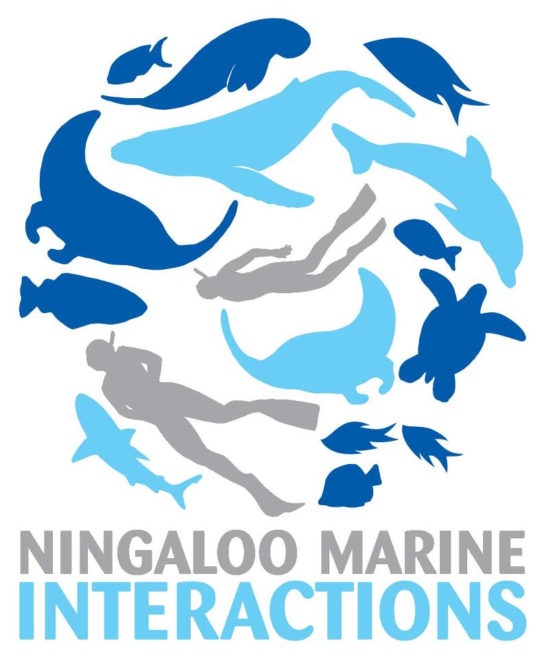 Ningaloo Marine Interactions