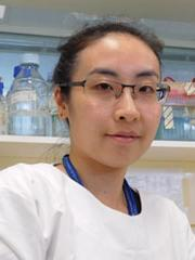 Dr Uda Ho