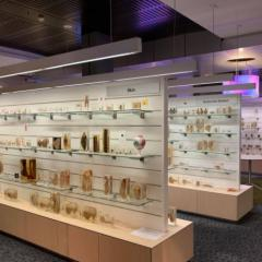 University Museums: A Reflection