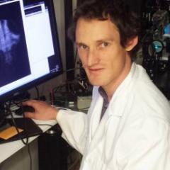 Dr Michael Taylor