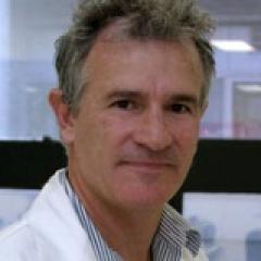 Associate Professor Peter Noakes